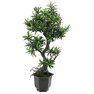 Europalms Bonsai wood tree, 90cm, Sztuczne bonsai 1/2