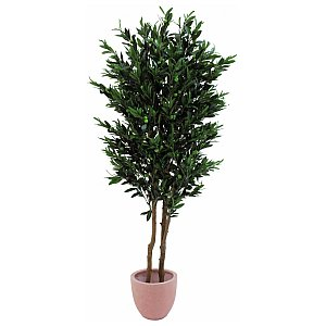 Europalms Olive tree with fruits, 2-trunks, 165cm, Sztuczne drzewo 1/5